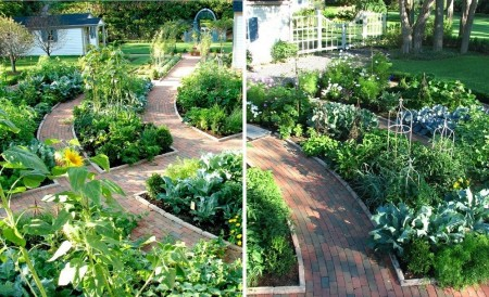 Poze Gradina legume - alei-caramida-gradina-legume.jpg