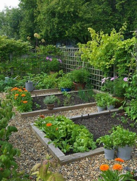Poze Gradina legume - alei-piatra-gradina-legume.jpg