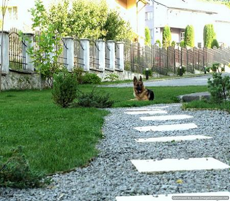 Poze Alei - Amenajare gradina cu alei, gazon, plante ornamentale