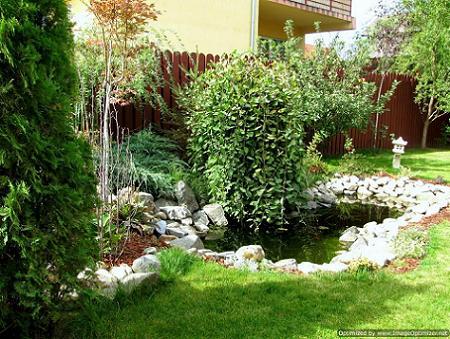 Poze Cascada si iaz - Amenajare iaz de gradina, gazon, plante ornamentale