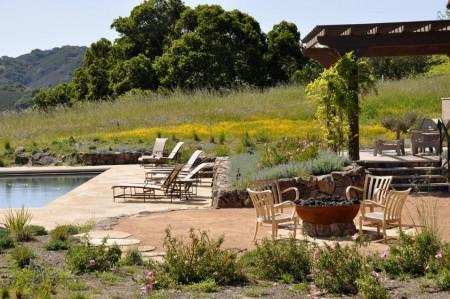 Poze Gradina de flori - Campul cu flori, extensie a gradinii