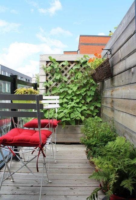 Poze Balcon - balcon-apartament-modern-fabrica.jpg