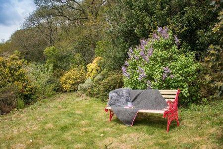 Poze Gradina de flori - Momente placute de relaxare in gradina