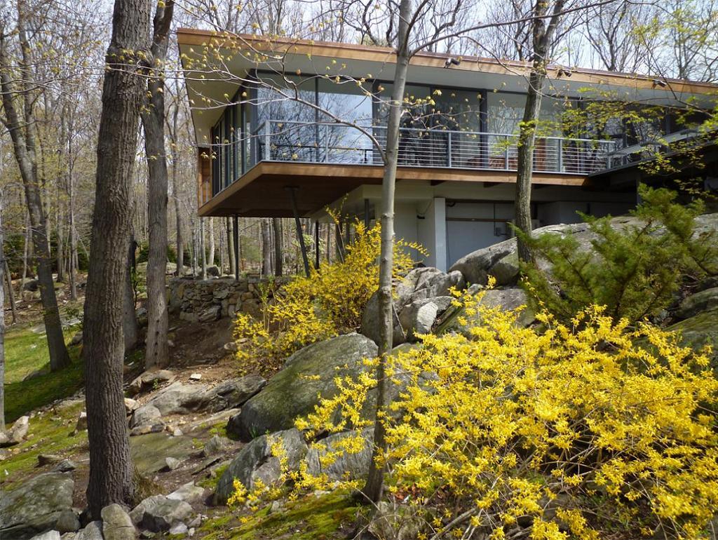 Casa in forma de cutie plutitoare, cu fatada in invelita in lemn si pereti de sticla