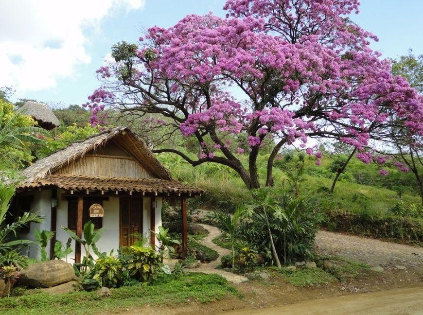 Casa ecologica din saci cu pamant