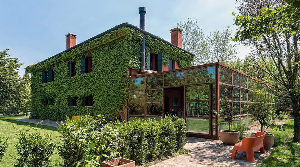 Casa acoperita cu iedera si cu o structura din sticla