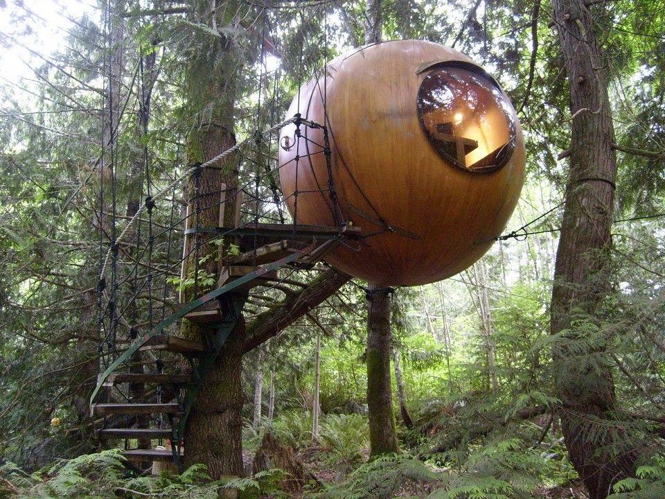 Casa sferica suspendata in copaci