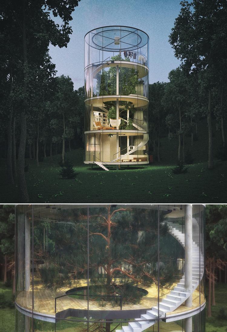 Casa din sticla pe patru niveluri ce inglobeaza un brad