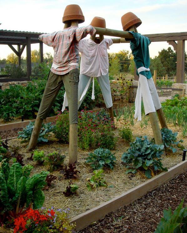 Sperietori de pasari pentru gradina de legume