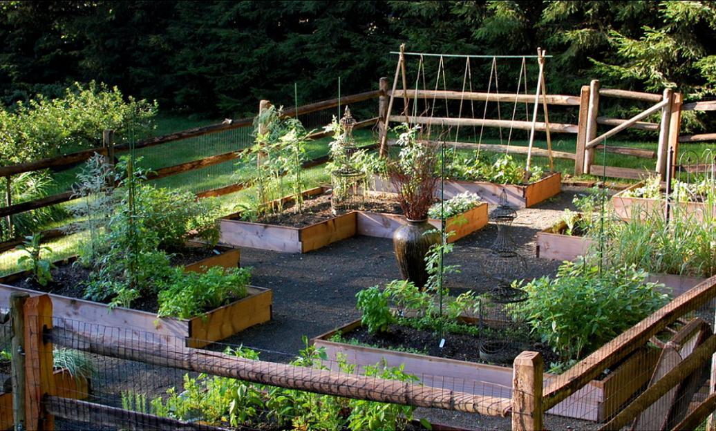 Gradina de legume in straturi inaltate