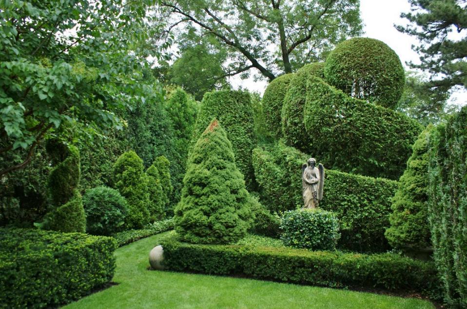 Arta topiara, arta sculpturii in plante