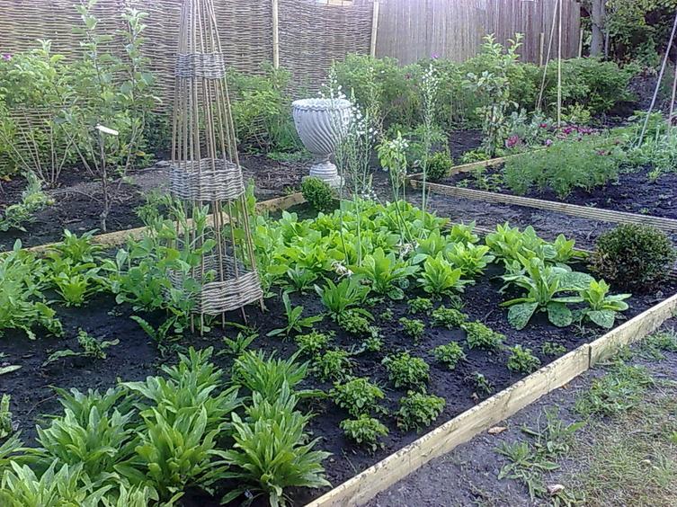 Gradina de legume traditionala cu valente decorative