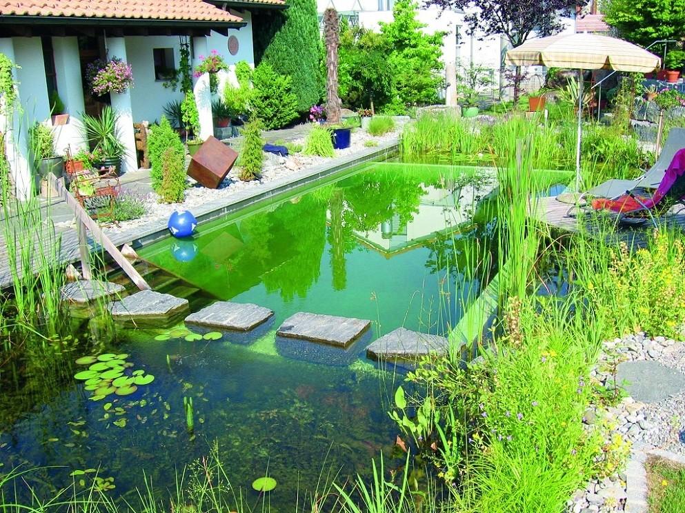Piscina naturala cu un design modern. Iazurile de filtrare a apei au si un deosebit rol decorativ.