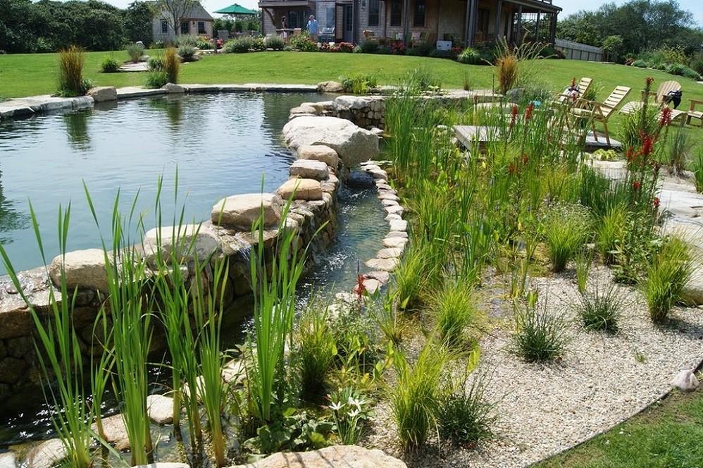 Iaz de filtrare piscina naturala