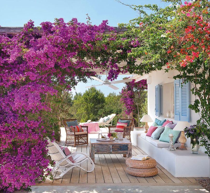 Florile cataratoare pe terasa