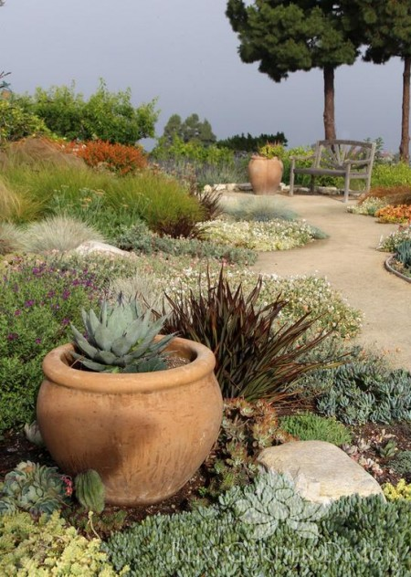 Poze Gradina de flori - Gradina rustic-mediteraneana