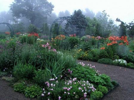 Poze Gradina de flori - Gradina rustica cu flori