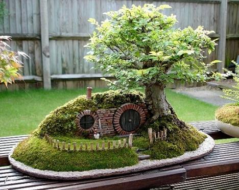 Poze Gradina de flori - Bonsaiul sau arta gradinaritului in miniatura