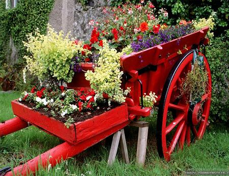 Poze Gradina de flori - Carul cu flori