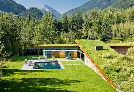 Poze Gradina de flori - O curte si o casa acoperite cu iarba verde