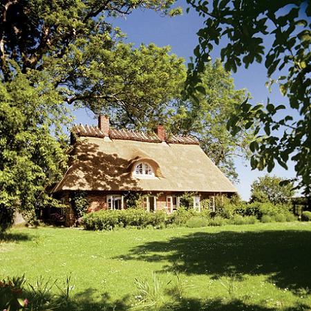 Poze Fatade - Casa cu acoperis de stuf si curte inverzita