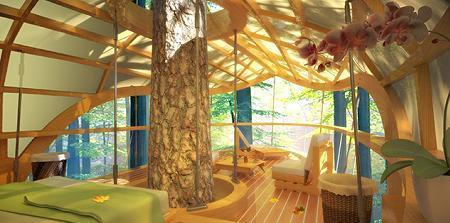 Poze Case lemn - Interiorul unei frumoase casute in copaci