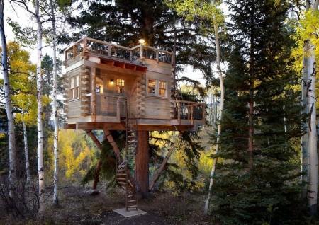 Poze Haioase - Casuta construita in copac