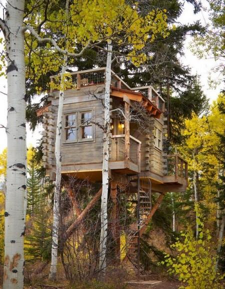 Poze Case lemn - Casuta de lemn din copac