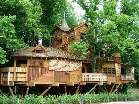 Poze Haioase - Casa din copaci in gradinile Castelului Alnwick