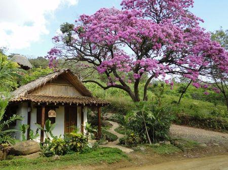 Poze Fatade - Casa ecologica construita din saci umpluti cu pamant