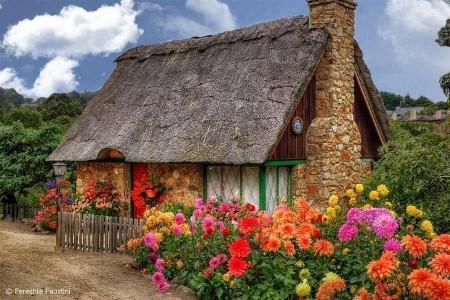 Poze Gradina de flori - Idee pentru o minunata casa de vacanta la tara