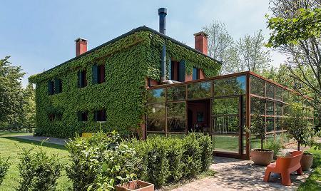 Poze Fatade - Casa acoperita cu iedera si cu o structura din sticla