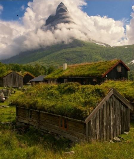 Poze Case lemn - Case din lemn cu acoperisuri verzi, armonie totala intre creatia omului si creatia naturii!