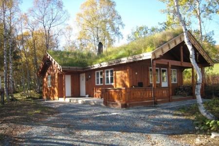 Poze Case lemn - Lemnul si acoperisurile verzi, doua elemente definitorii ale caselor traditionale din tarile nordice
