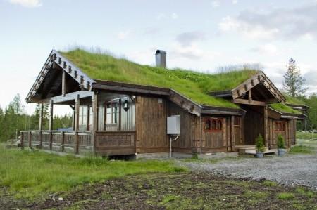 Poze Fatade - Casa traditionala scandinava realizata din lemn si cu un acoperis verde