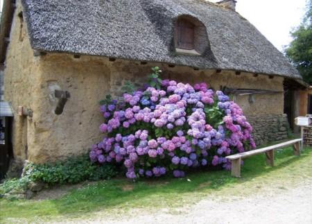 Poze Fatade - Casa veche in Bretania, Franta