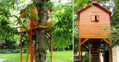 Poze Locuri de joaca - Casuta in copac Rhea