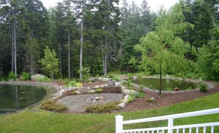 Poze Piscina - Cele doua componente ale unei piscine naturale pot fi complet separate