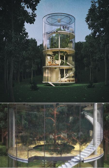 Poze Haioase - Casa din sticla pe patru niveluri ce inglobeaza un brad