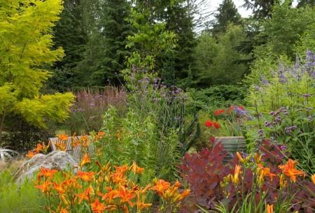 Poze Gradina de flori - Culoare si parfum in gradina rustica