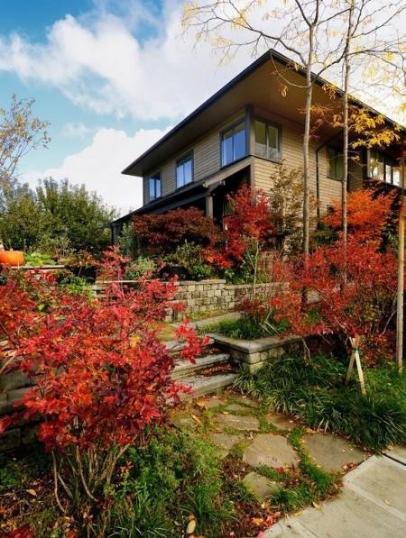 Poze Gradina de flori - Toamna gradina se imbraca in cele mai colorate si spectaculoase straie