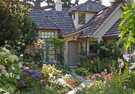 Poze Gradina de flori - O superba gradina plina cu flori multicolore