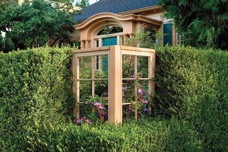 Poze Garduri si porti - decor-ferestre-gard-viu.jpg