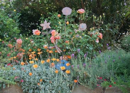 Poze Gradina de flori - Cele mai rezistente flori din gradina
