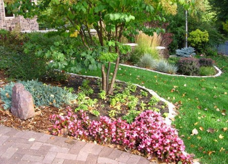 Poze Gradina de flori - Inceput de toamna in gradina