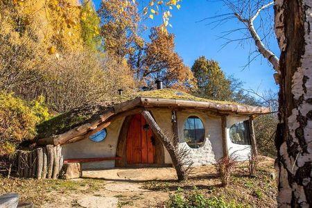 Poze Fatade - Casa ecologica cu acoperis verde