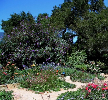 Poze Gradina de flori - Sa ne incantam cu o frumoasa gradina rustica!