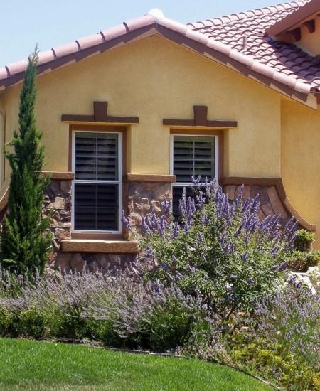 Poze Fatade - Plante mediteraneene in concordanta perfecta cu stilul casei