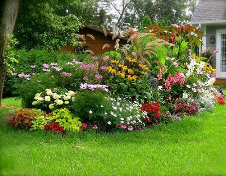 Poze Gradina de flori - O superba zona inflorita a gradinii