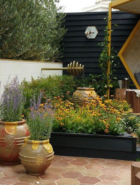 Poze Gradina de flori - flori-gradina-albinelor-2.jpg